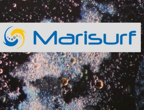 MARISURF: marine surfactants